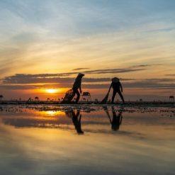 Thuê xe Hồ Chí Minh đi Hồ Tràm